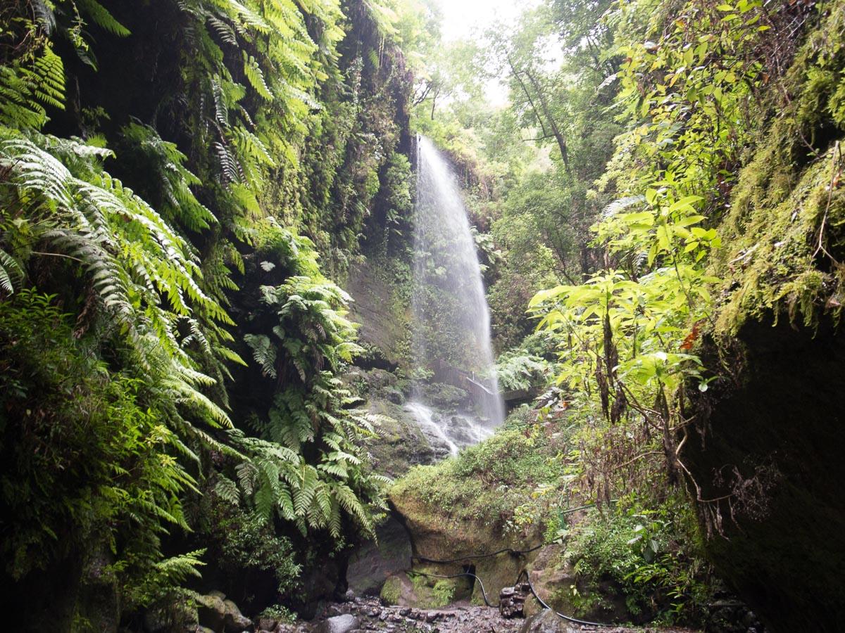 Wasserfall bei Los Tilos