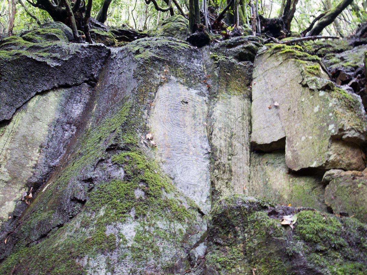 Petroglyphen in La Zarsa